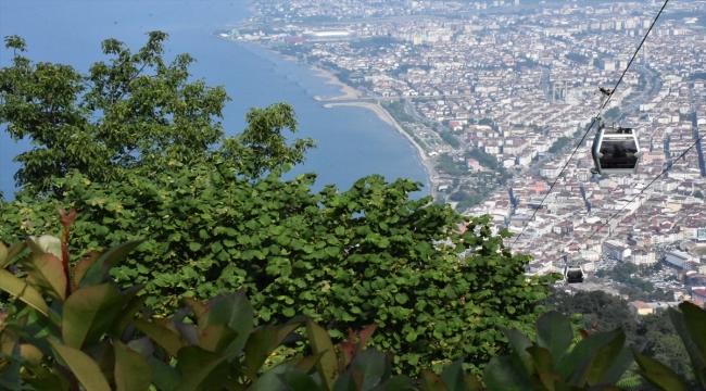 Doğasıyla cezbeden Boztepe'de turist hareketliliği yaşanıyor