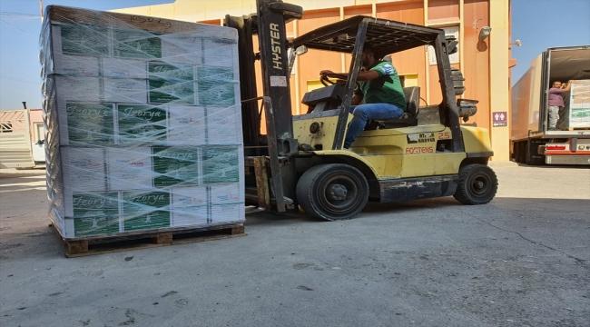 Mersin'den Fransa'ya zeytinyağı ihracatı